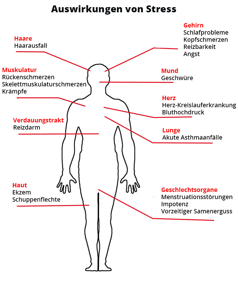 Nikotinsucht endlich überwinden → Ursachen, Symptome & Folgen